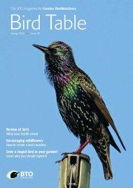 Bird Table 85 cover
